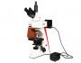 Microscope Flourecent PMC - 30
